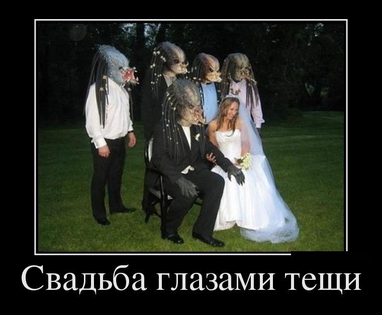 Картинки к свадьбе свекровь прикольные