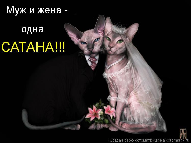 Картинки муж и жена одна сатана, мальчику