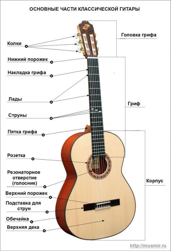 Картинка названия струн