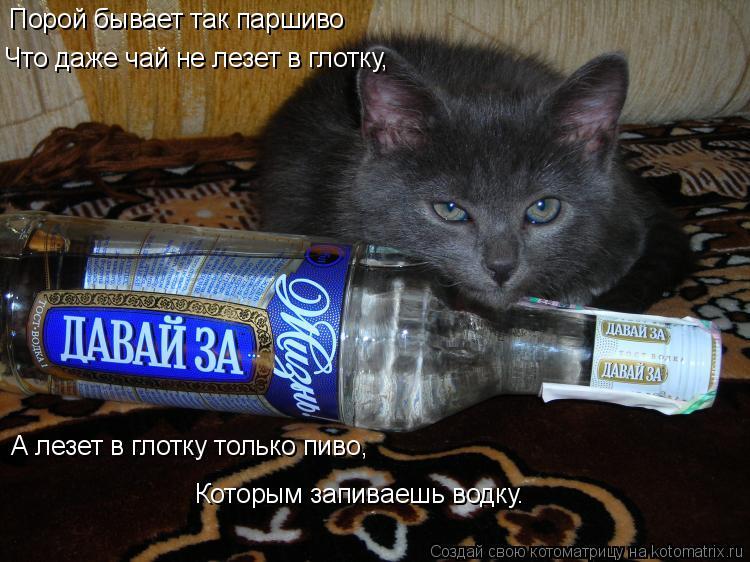 Картинка дайте выпить ридумать теперь