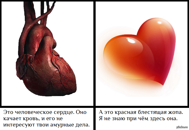 все через жопу зато от сердца-мщ2