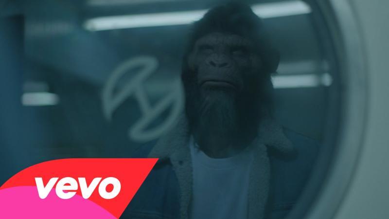 клип песни где снимается обезьяна