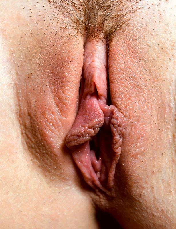 Красивые женские полоиые органы