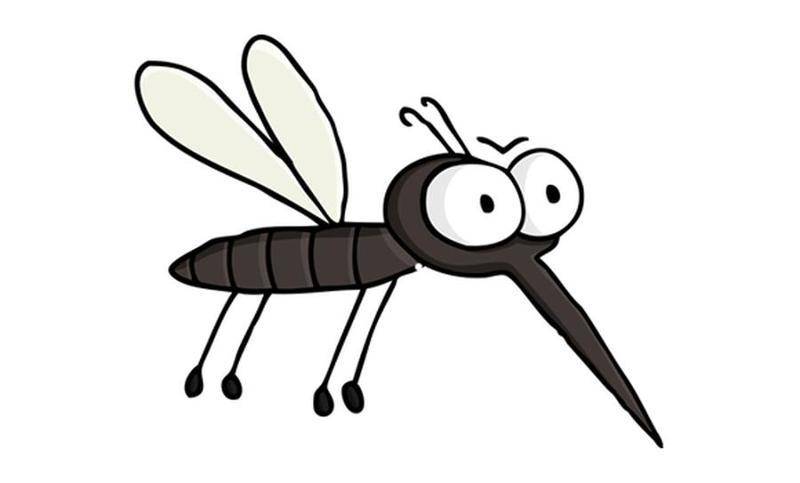 Днем рождения, картинка смешной комарик