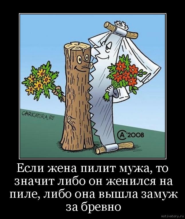 Жена пилит мужа гифка
