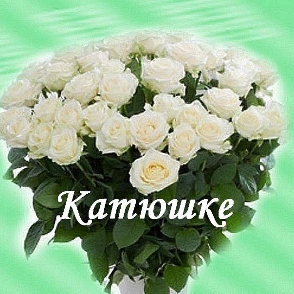 Открытки с днем рождения для кати белые розы