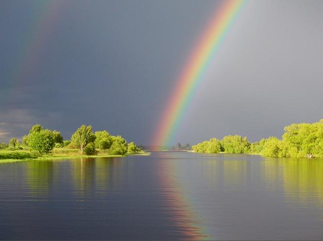 Пятачок, картинки после дождя всегда выглядывает радуга