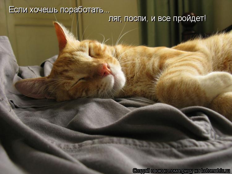 Нельзя спать картинки прикольные