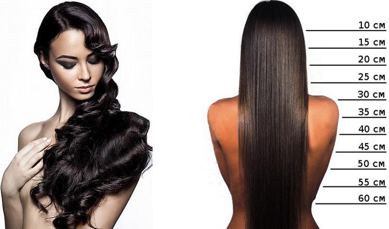 длина волос по картинке красоты она