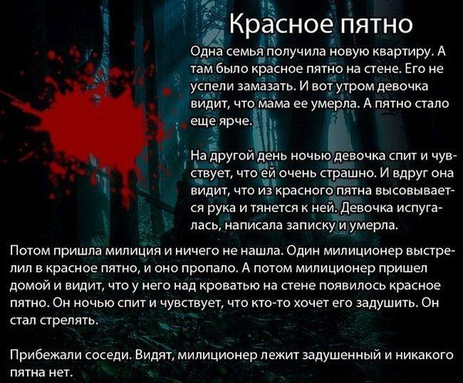https://otvet.imgsmail.ru/download/u_cb89d6bf5b310a61f7e9b5bf0b1c3ecb_800.jpg