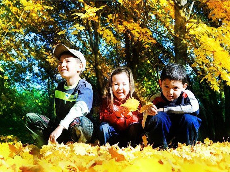 Подвижный детский праздник осени на прир Аниматоры Улица Академика Петровского