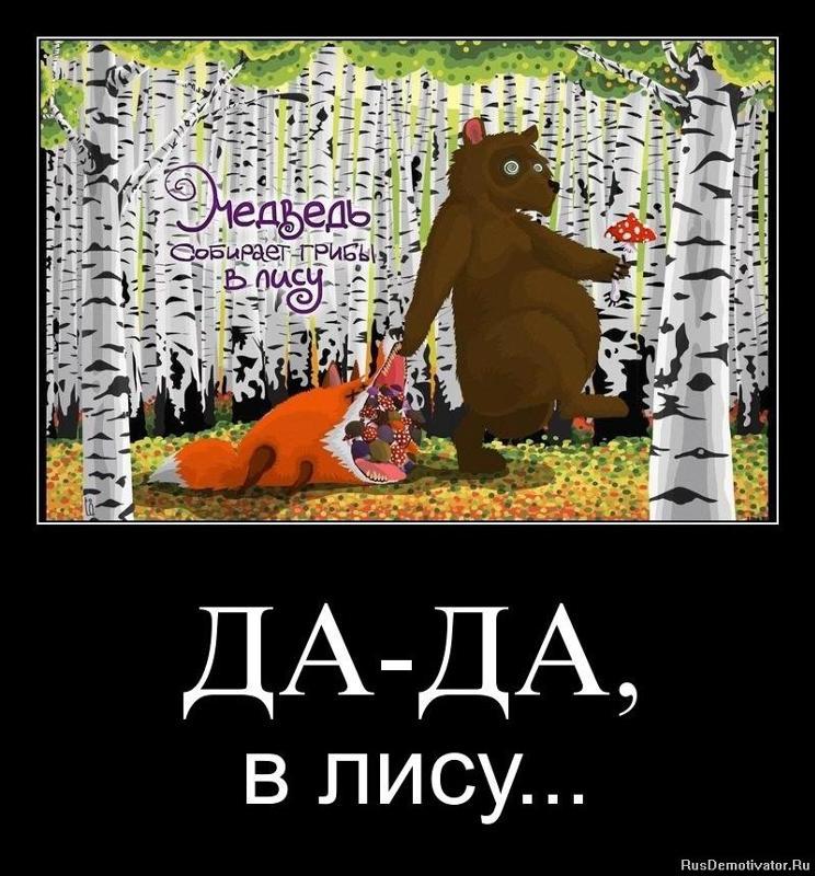 Картинка прикол медведь собирает грибы в лесу