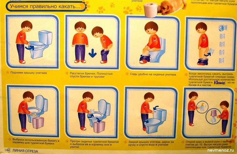 Правила посещения туалета в картинках