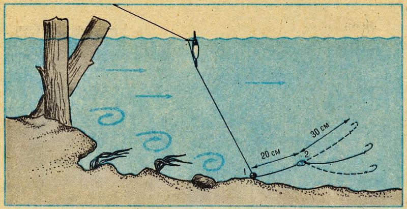 Ловля сазана с лодки на течении видео