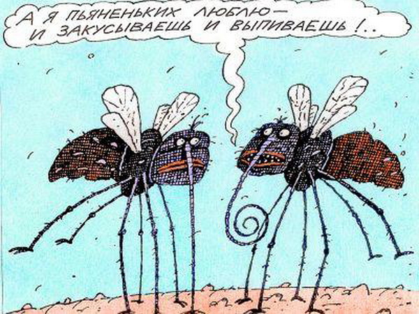 Гифы, картинка комар прикол