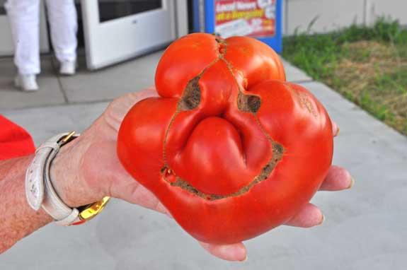 Сердечко гифка, прикольные картинки про томат