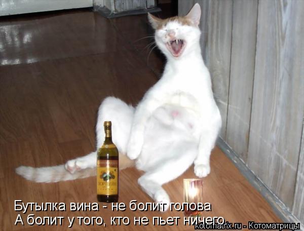 Картинка я по пьяни